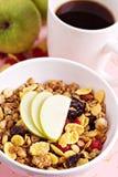 Granola с гайками и плодоовощами Стоковые Фотографии RF