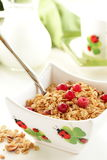Granola. Royalty Free Stock Images