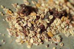 granola Royaltyfri Bild
