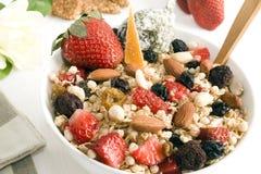 Granola & frutta Immagine Stock