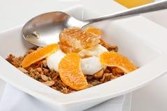 Granola avec du yaourt image libre de droits