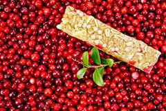 Granola bar in the cranberries with a sprig Stock Photos
