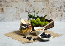 Granola. Bars served with fruits and honey royalty free stock images