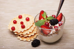 granola with berries and cookies Stock Photography