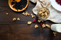Granola with berries. Granola with milk berries and nuts Stock Photos