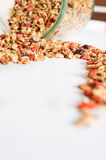 Granola for breakfast. Healthy food and diet. Stock Images