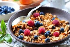 Granola caseiro com mirtilos, as framboesas, as passas, leite e mel frescos Pequeno almoço saudável Fotografia de Stock