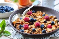 Granola caseiro com mirtilos, as framboesas, as passas, leite e mel frescos Pequeno almoço saudável Imagens de Stock