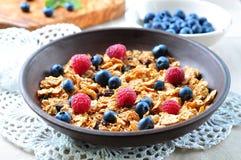 Granola caseiro com mirtilos, as framboesas, as passas, leite e mel frescos Pequeno almoço saudável Foto de Stock