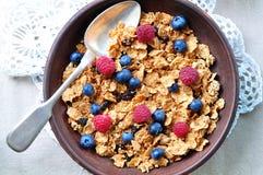 Granola caseiro com mirtilos, as framboesas, as passas, leite e mel frescos Pequeno almoço saudável Imagem de Stock Royalty Free