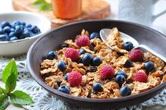 Granola caseiro com mirtilos, as framboesas, as passas, leite e mel frescos Pequeno almoço saudável Fotografia de Stock Royalty Free