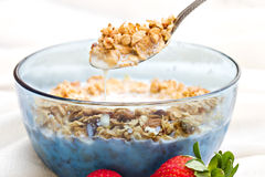 Granola cereal. Stock Image
