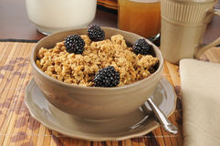 Granola cereal with blackberries Stock Images