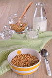 Granola cereal made Royalty Free Stock Photography