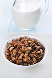 Granola cereal and milk Stock Photography