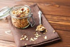 Granola com flocos e frutos da aveia Imagem de Stock