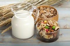 Granola com frutos e porcas e leite Fotografia de Stock Royalty Free