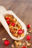Granola con le bacche rosse in mestolo Immagine Stock