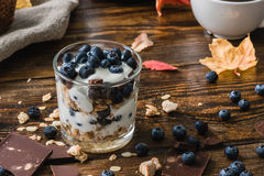 Granola con yogurt e le bacche Fotografia Stock Libera da Diritti