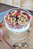 Granola and Dried Berry cup Stock Photography