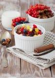 Granola e bagas frescas Imagem de Stock Royalty Free