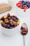Granola e bagas frescas Foto de Stock Royalty Free