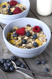 Granola with fresh berries. Breakfast Stock Images