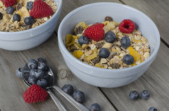 Granola with fresh berries. Breakfast Royalty Free Stock Images