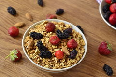 Granola and fresh berries Stock Images