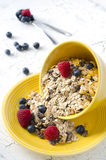 Granola. With fresh berries for healthy breakfast Royalty Free Stock Photo