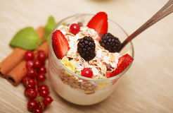 Granola with fresh berries and yoghurt. Health food Royalty Free Stock Image