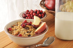 Granola with fresh fruit. Organic granola with cranberries, apple slices, raisins, almonds and walnuts Stock Photos