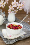 Homemade Granola. Royalty Free Stock Photos