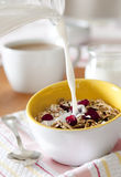 Granola with Fruit and Milk Stock Photography