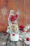 Granola in glass with yogurt and raspberry Stock Photos