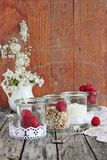 Granola in glass with yogurt and raspberry Stock Images
