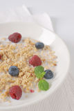 Granola for healthy breakfast Stock Images