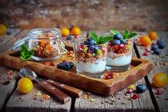 Granola hecho en casa con el yogur para el desayuno Fotografía de archivo libre de regalías