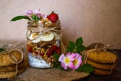 Granola in the jar and cookies stock photo