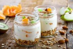 Granola med yoghurt och frukter arkivbilder
