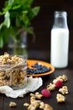 Granola met melk Royalty-vrije Stock Afbeelding