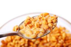 Granola with milk Stock Image