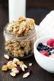 Granola with milk. Berries and nuts Royalty Free Stock Images