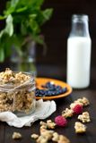 Granola with milk. Berries and nuts Royalty Free Stock Image