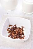 Granola with milk in white bowl Royalty Free Stock Photography