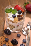 Granola with muesli and various berries Stock Images