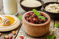 Granola nuts de quinoa de farine d'avoine images libres de droits