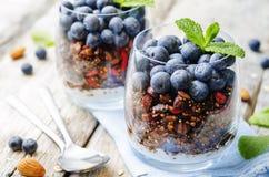 Granola nuts de quinoa de farine d'avoine avec des myrtilles photographie stock libre de droits
