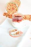 Granola per l'alimento sano e la dieta della prima colazione Immagini Stock Libere da Diritti