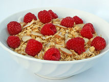 Granola and raspberries. Bowl of yogurt covered with granola, almonds and raspberries royalty free stock image